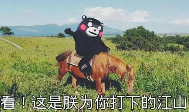 吃瓜周报:B站双爹争霸,PDD状告熊猫,版号归来-有饭研究